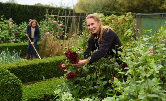 Gardening to provide relief from mild mental health conditions