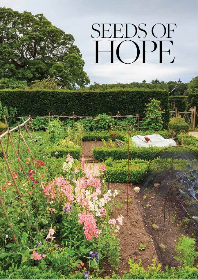 Seeds of hope 1